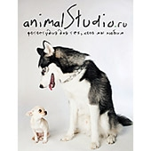Фотостудия animalStudio